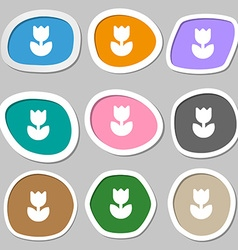 Flower rose icon symbols Multicolored paper vector image