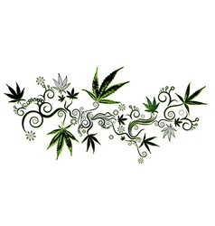 Marijuana cannabis green leaf texture background vector