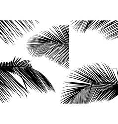 Palm Leaf Silhouettes vector