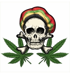 Skull in Rastaman Hat vector image