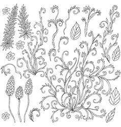 doodle curls vector image vector image