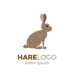 Flat hare logo vector image vector image