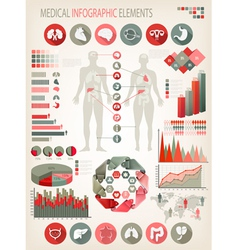 Medical infographics elements Human body with vector image
