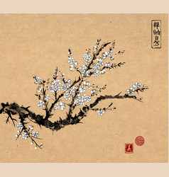 oriental sakura cherry tree in blossom on vintage vector image vector image