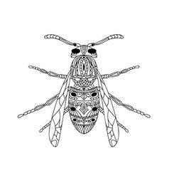 Antistress coloring page insect wasp isolated on vector