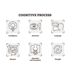 cognitive process icons collection vector image
