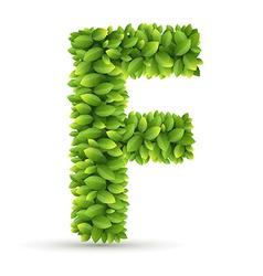 letter f alphabet green leaves vector image
