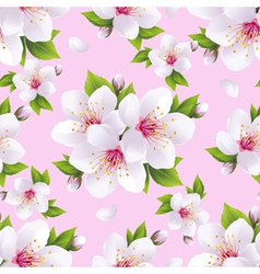 Seamless pattern background with sakura vector image