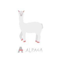 alpaca animal alphabet character kids vector image