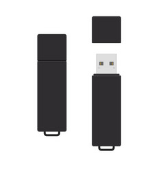 Black rectangle usb flash drive opened and closed vector