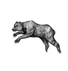 Cave bear extinct brown animal vintage retro vector