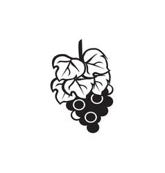 flat black grape icon vector image