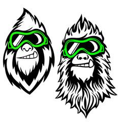 funny bearded yeti logo vector image