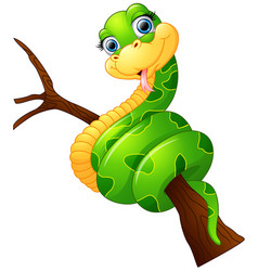 happy green snake on the branch vector image