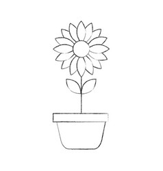 potted flower nature decoration interior plant vector image