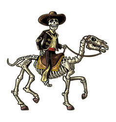 rider in mexican man national costumes vector image