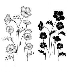silhouettes delicate flowers vector image