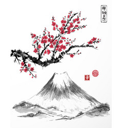 oriental sakura cherry tree in blossom and vector image vector image