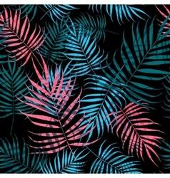 Palm tree foliage vector image