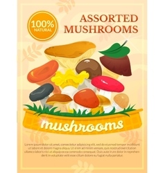 Mushrooms concept design vector image vector image