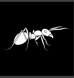 Ant it is icon vector