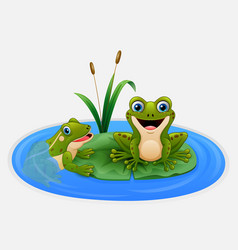 cute frogs on a leaf in the pond vector image