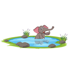 Happy elephant playing in the water vector