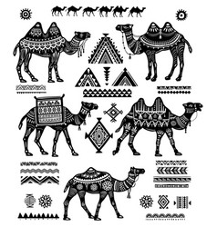 Set of stylized figures of camels and ornament vector