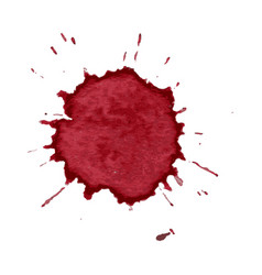 spot spray of red wine on a white background vector image