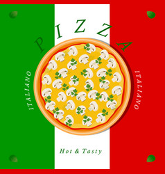 The set pizza vector