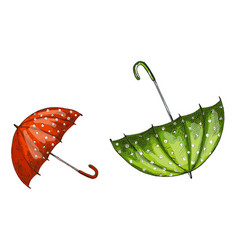 two opened green and red umbrellas isolated on vector image