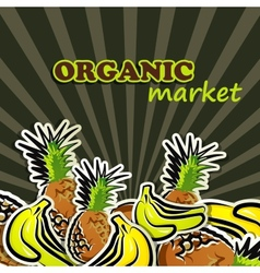 fruit organic food concept vector image