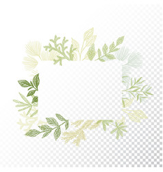 rectangular frame branches and leaves vector image vector image