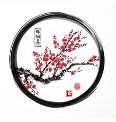 oriental sakura cherry tree blossoming in black vector image vector image