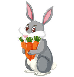 A rabbit holding carrot vector