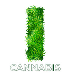 Cannabis hemp leaf logo vector