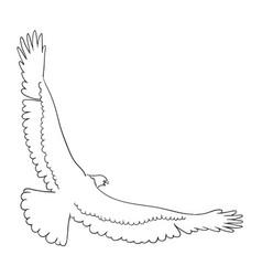 eagle line art 05 vector image