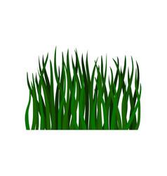 Flat of long green grass vector