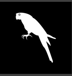 parrot it is icon vector image