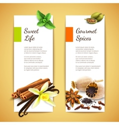 Spices banners vertical vector image