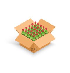 Wine bottles cardboard box 3d vector