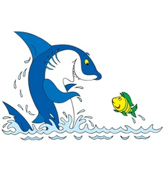 shark and fish vector image vector image