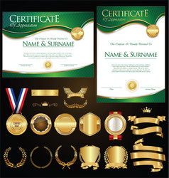 Collection of certificate badges labels shields vector