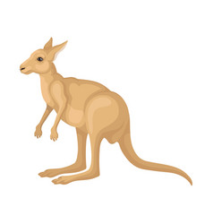 Detailed flat icon of kangaroo side view vector