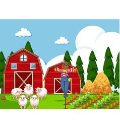 farm scene with sheep vector image