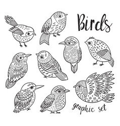 Graphic set with hand drawn exotic birds line art vector