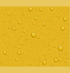 Light beer transparent drops of dew on yellow vector