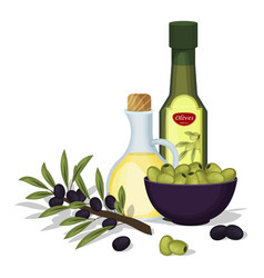 Olive oil products and decorations from vector