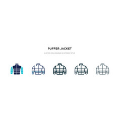 Puffer jacket icon in different style two vector