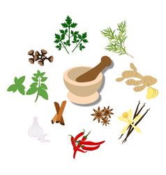 Spices and mortar vector